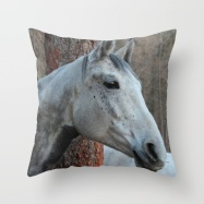 grey-horse-qn5-pillows