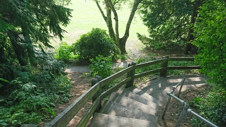 stairs in park