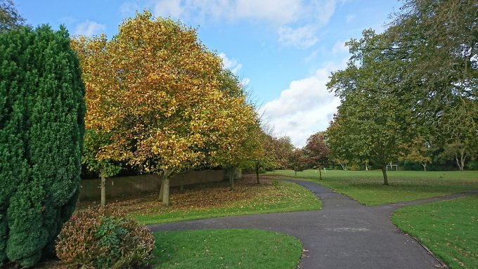 Autumnal photo stream